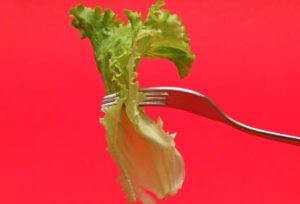 Healthy Living Habits - eating breakfast