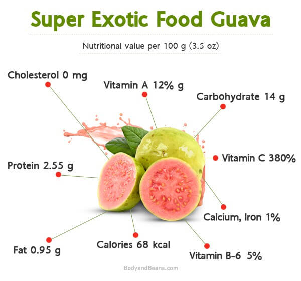 Super fruit guava benefits of guava fruits and guava leaves super fruit guava benefits of guava fruits and guava leaves ccuart Image collections
