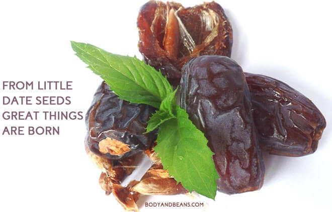 Surprising Health Benefits of Dates Fruit for Bone, Heart, Digestion and Overall Health