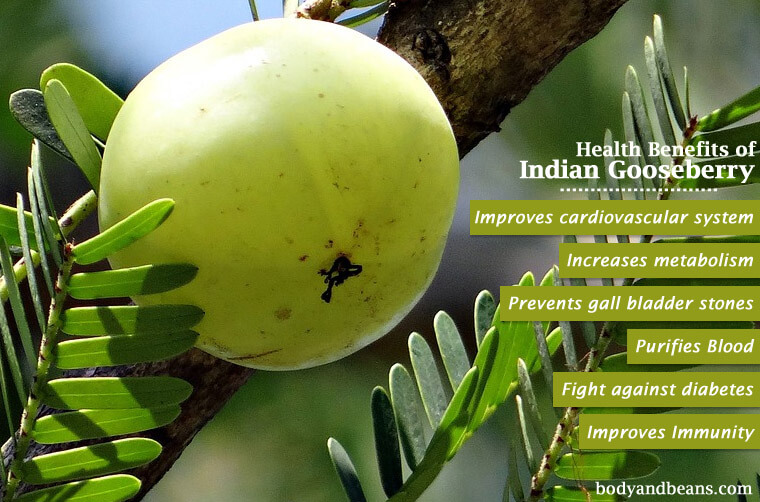 Benefits of Amla on Skin, hair and Health (Gooseberry)
