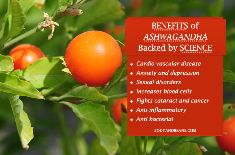Surprising Benefits of Ashwagandha Backed by Science