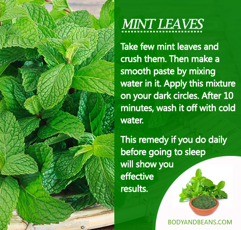 Remedies to Get Rid of Dark Circles: Tips to use mint leaves to remove dark circles