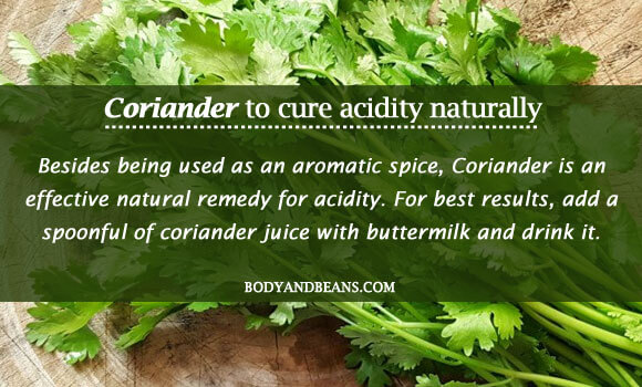 Coriander to cure acidity naturally