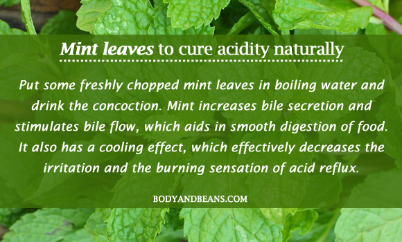 Mint leaves to cure acidity naturally