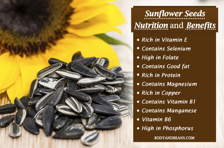 Sunflower Seeds Nutrition And Benefits That Will Make You Love Them