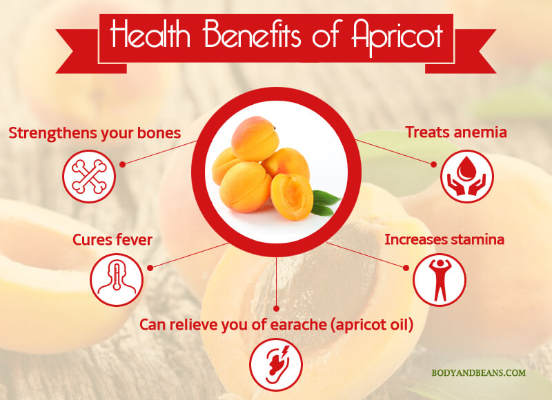 Health Benefits of Apricoat