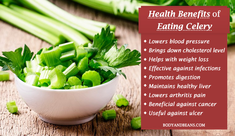 Health benefits of eating celery includes weight loss, lowers blood pressure and cholesterol levels, treats infection and boosts digestion.