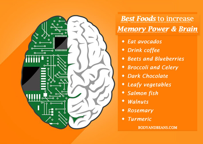 16 Best Foods to Increase Memory Power and Brain