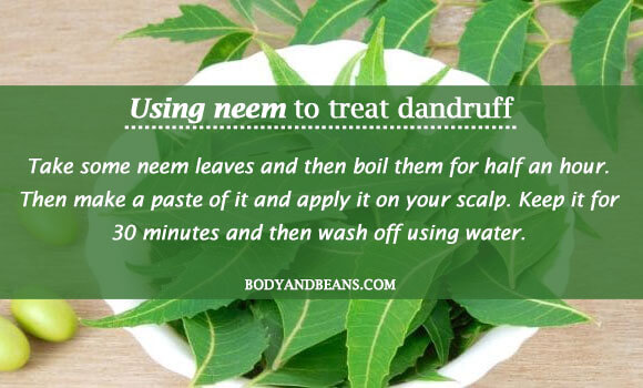 Using neem to treat dandruff