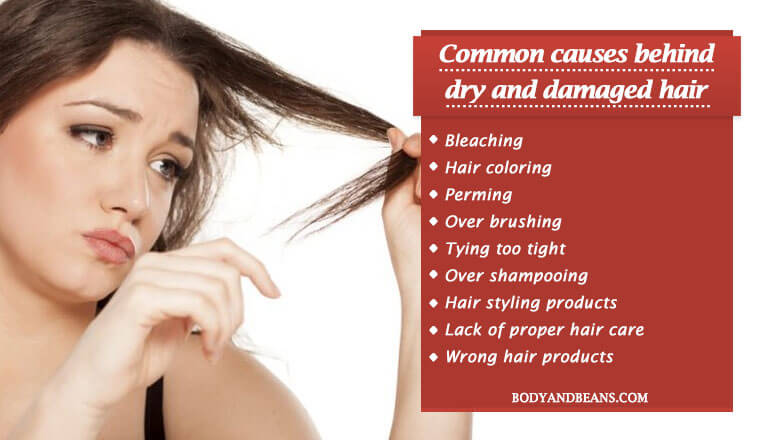 Common causes behind dry and damaged hai