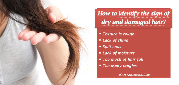 How to identify the sign of dry and damaged hair?